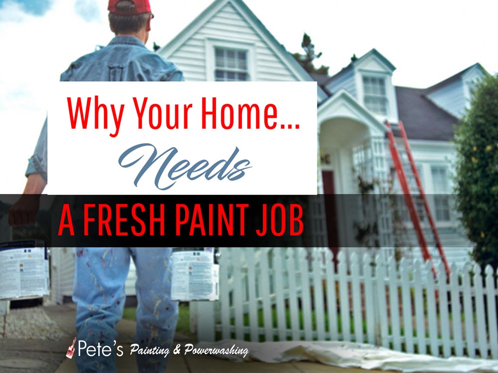 Pete's Professional Painting and Powerwashing 25318 Elm Creek Dr Spring, TX 77380 Phone: (281) 541-1941